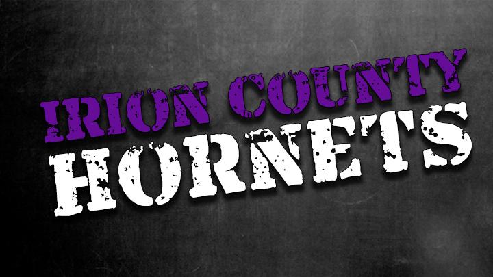 Irion County Hornets_1471277678215.jpg