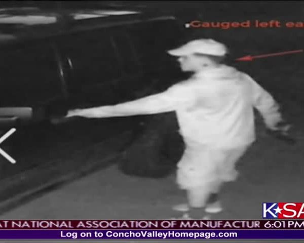 Vehicle Burglary Suspect_11839474