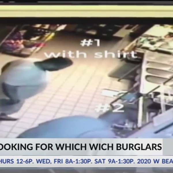 Which_Wich_Burglars_0_20180511152334