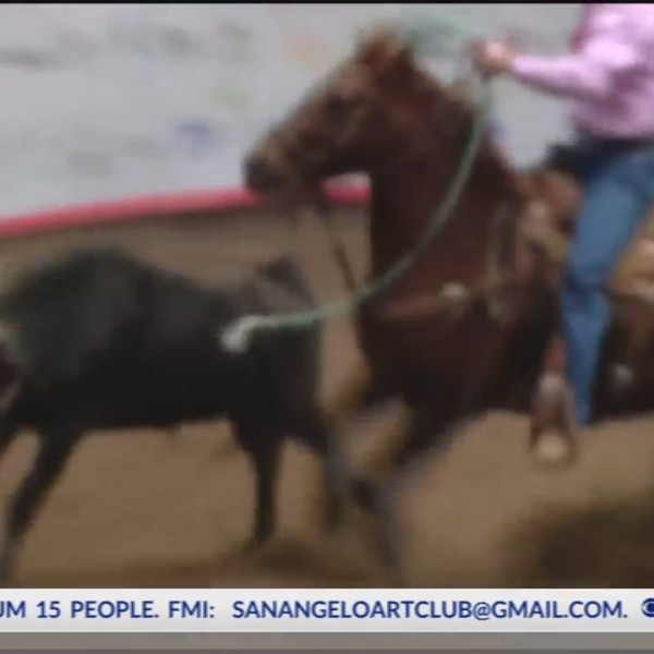 RODEO HIGHLIGHTS 02-14-19