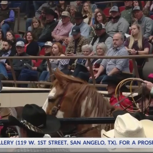 rodeo highlights 02-13-19